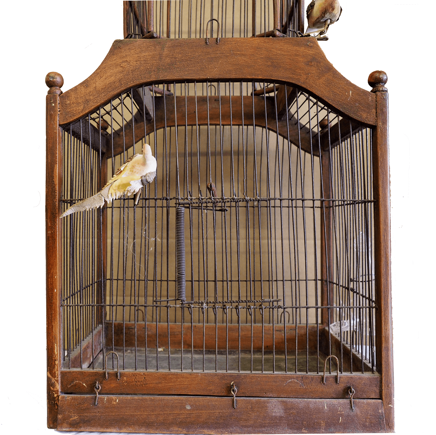 19th century victorian cupola bird cage for Victorian cupola